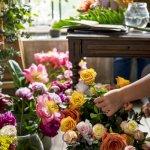 Venta o traspaso de negocios por jubilación en España