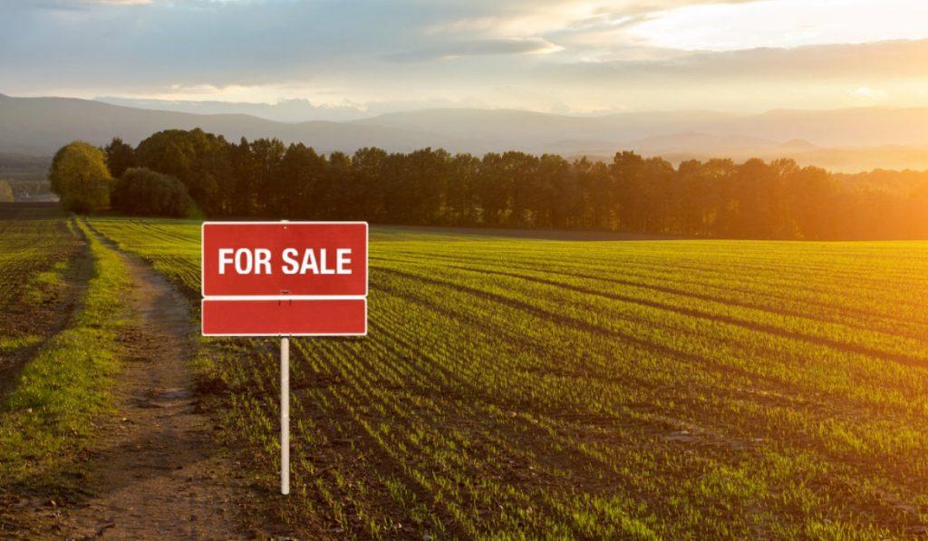 Comprar un terreno bien ubicado para montar un negocio